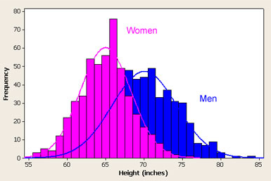"a chart of male and female height distribution, with a bar graph by inch and a best fit normal distribution. For females the mode is 66"" (with 7.5%), the second highest frequency at 64"" (5.5%), the mean is about 65"". The male bar graph shows a mode of 71"" (5%) with a second highest frequency at 68"" (4.8%) and mean of 70"". The female curve is significantly higher and narrower than the male curve (standard deviation of 3.5 for female vs. 4 for male). Neither the female nor male distribution perfectly matches the calculated normal distribution ""bell"" curve."